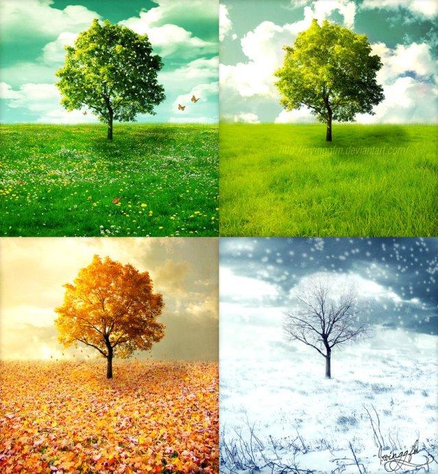 seasons2
